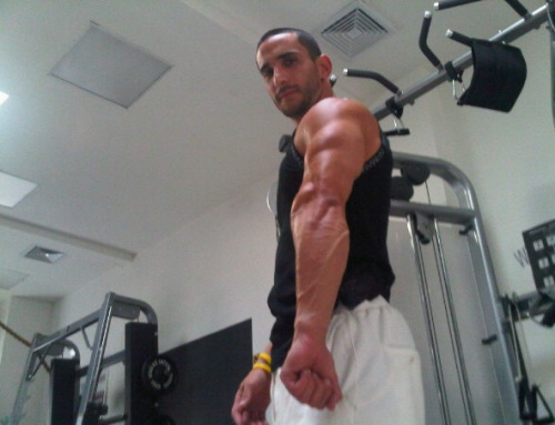 Shoulders and Triceps