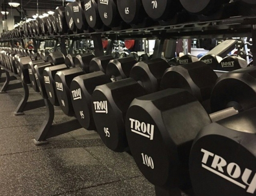 Traps and Triceps
